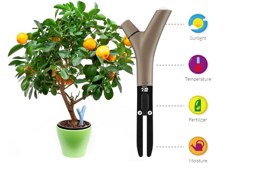 Parrot's Flower Power - Smart Home Gadgets